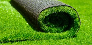 Five Tips To Help You Buy Best Lawn Turf